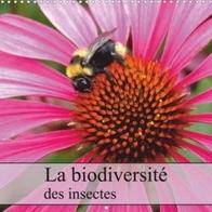 Kal_biodiversity_Kat